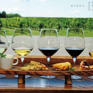 Cheers! Celebrating Ontario Wines and Local Flavours | Sample photo #1